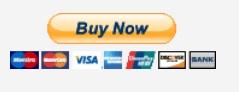 PayPalDDtee001