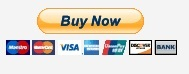 PayPalbutton2